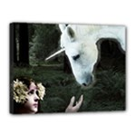 Girl & Her Unicorn Canvas 16  x 12  (Stretched)