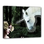 Girl & Her Unicorn Canvas 20  x 16  (Stretched)