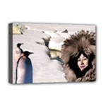 Eskimo Scene Deluxe Canvas 18  x 12  (Stretched)