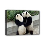 Let Me Kiss You Pandas In Love Mini Canvas 7  x 5  (Stretched)