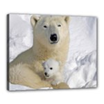 In Moms Arm Mothers Love Canvas 20  x 16  (Stretched)