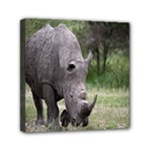 Wild Animal Rhino Mini Canvas 6  x 6  (Stretched)