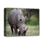 Wild Animal Rhino Deluxe Canvas 14  x 11  (Stretched)