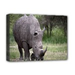 Wild Animal Rhino Deluxe Canvas 16  x 12  (Stretched)