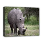 Wild Animal Rhino Deluxe Canvas 20  x 16  (Stretched)