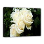 White Rose Canvas 16  x 12  (Stretched)