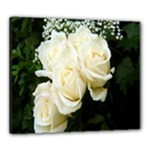 White Rose Canvas 24  x 20  (Stretched)