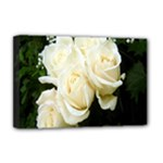 White Rose Deluxe Canvas 18  x 12  (Stretched)