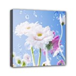 White Gerbera Flower Refresh From Rain Mini Canvas 6  x 6  (Stretched)