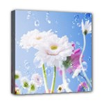 White Gerbera Flower Refresh From Rain Mini Canvas 8  x 8  (Stretched)