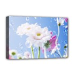 White Gerbera Flower Refresh From Rain Deluxe Canvas 18  x 12  (Stretched)