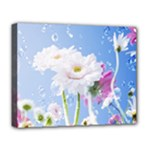 White Gerbera Flower Refresh From Rain Deluxe Canvas 20  x 16  (Stretched)