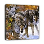 Wolf Family Love Animal Mini Canvas 8  x 8  (Stretched)