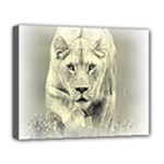 Animal Lion Hunting For Love Deluxe Canvas 20  x 16  (Stretched)