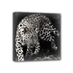 Animal Leopard Mini Canvas 4  x 4  (Stretched)