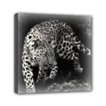 Animal Leopard Mini Canvas 6  x 6  (Stretched)