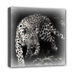 Animal Leopard Mini Canvas 8  x 8  (Stretched)