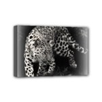 Animal Leopard Mini Canvas 6  x 4  (Stretched)