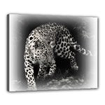 Animal Leopard Canvas 20  x 16  (Stretched)