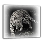 Animal Leopard Canvas 24  x 20  (Stretched)