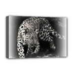 Animal Leopard Deluxe Canvas 18  x 12  (Stretched)