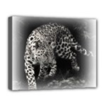 Animal Leopard Deluxe Canvas 20  x 16  (Stretched)