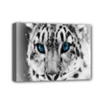 Animal Leopard In Snow Mini Canvas 7  x 5  (Stretched)