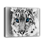 Animal Leopard In Snow Canvas 10  x 8  (Stretched)