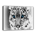 Animal Leopard In Snow Canvas 16  x 12  (Stretched)
