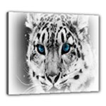 Animal Leopard In Snow Canvas 24  x 20  (Stretched)
