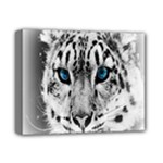 Animal Leopard In Snow Deluxe Canvas 14  x 11  (Stretched)
