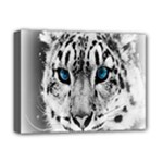 Animal Leopard In Snow Deluxe Canvas 16  x 12  (Stretched)