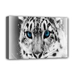 Animal Leopard In Snow Deluxe Canvas 18  x 12  (Stretched)