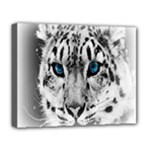 Animal Leopard In Snow Deluxe Canvas 20  x 16  (Stretched)