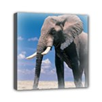 Animals Elephants Lonely But Strong Mini Canvas 6  x 6  (Stretched)
