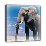 Animals Elephants Lonely But Strong Mini Canvas 8  x 8  (Stretched)