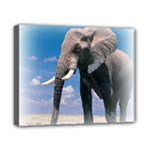 Animals Elephants Lonely But Strong Canvas 10  x 8  (Stretched)