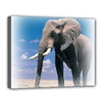 Animals Elephants Lonely But Strong Canvas 14  x 11  (Stretched)