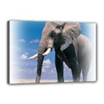 Animals Elephants Lonely But Strong Canvas 18  x 12  (Stretched)
