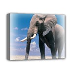 Animals Elephants Lonely But Strong Deluxe Canvas 14  x 11  (Stretched)
