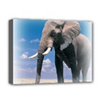 Animals Elephants Lonely But Strong Deluxe Canvas 16  x 12  (Stretched)