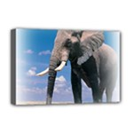 Animals Elephants Lonely But Strong Deluxe Canvas 18  x 12  (Stretched)