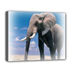 Animals Elephants Lonely But Strong Deluxe Canvas 20  x 16  (Stretched)