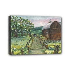 Amish Apple Blossoms - Ave Hurley - Mini Canvas 7 x 5 (Stretched)