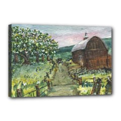 Amish Apple Blossoms - Ave Hurley - Canvas 18 x 12 (Stretched)