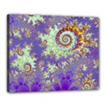 Sea Shell Spiral, Abstract Violet Cyan Stars Canvas 20  x 16  (Framed)