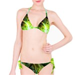 Dawn Of Time, Abstract Lime & Gold Emerge Bikini