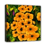 Yellow Poppies - Ave Hurley - Mini Canvas 8  x 8  (Stretched)