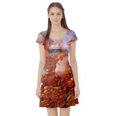 Star Dream Short Sleeve Skater Dress by icarusismartdesigns