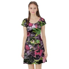 Amazing Garden Flowers 33 Short Sleeve Skater Dresses by MoreColorsinLife